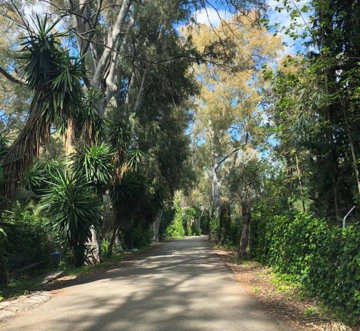 Tolox avenue