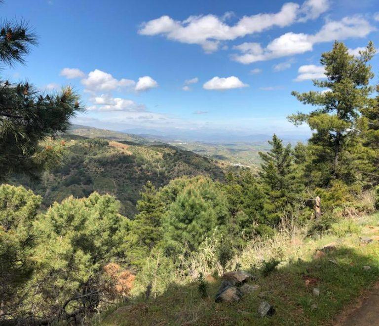 Tolox views 2
